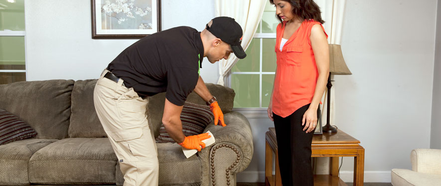 Glenview, IL carpet upholstery cleaning